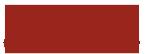 PolarHolz Logo
